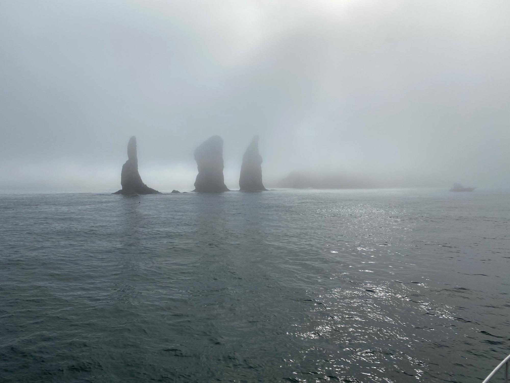В океане поначалу стоял жуткий туман. Видимость стремилась к нулю. Мы уже успели поржать, что если мы одиннадцать часов будем болтаться в этом молоке, то это будет так себе поездочка