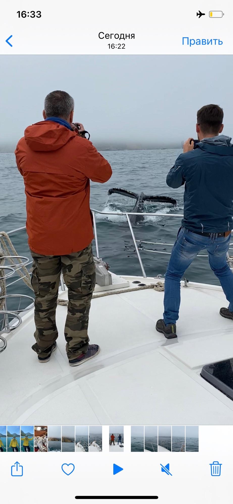 Снимать китов и касаток очень сложно! Это скрин с видео. Кит нырнул прямо под нашу лодку!