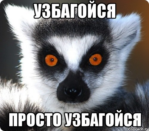 http://ic.pics.livejournal.com/crimsonalter/13842643/3480/3480_original.jpg