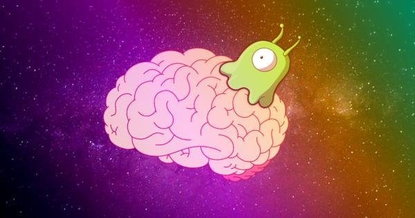 Кем захвачены наши мозги?