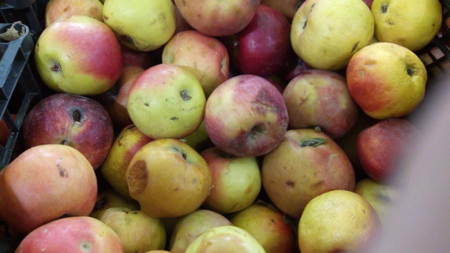 Яблоки-2
