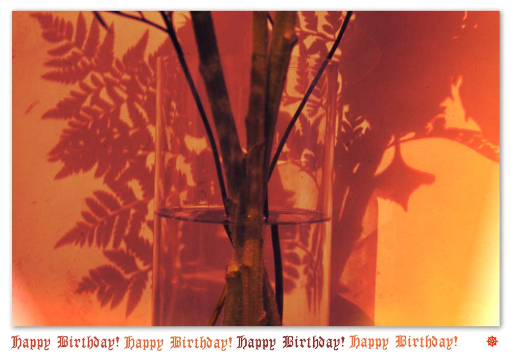 2014-08August-07 (92)birthday-s