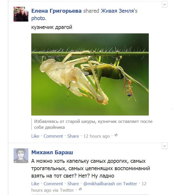 FB-memories