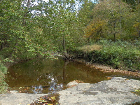 Graham Creek Nature Preserve Interpretive Center