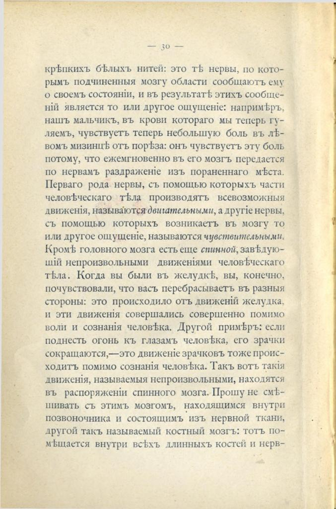page - 0028