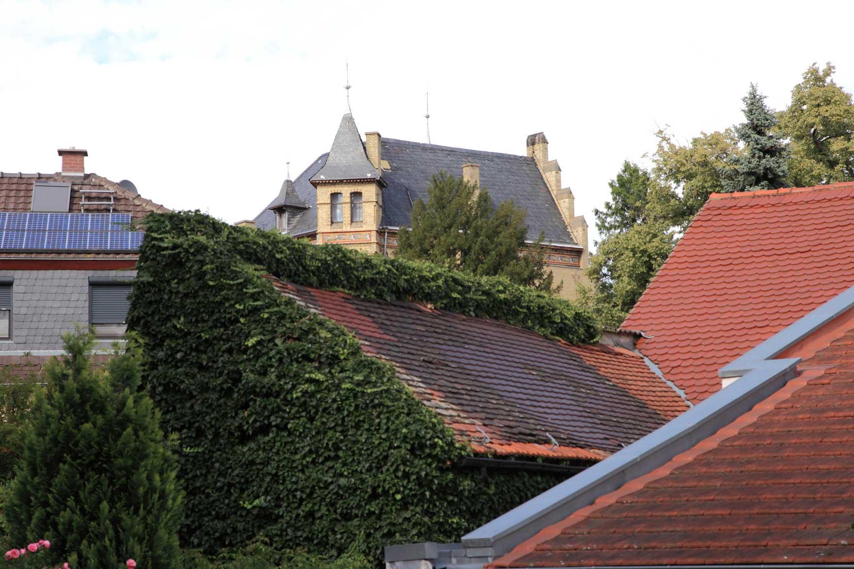 Rhine-14-08-14_18-40-16