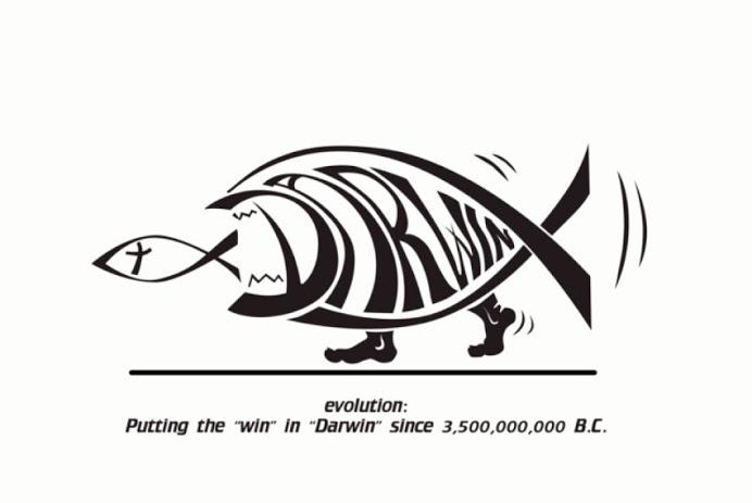 Ryba pozera rybe