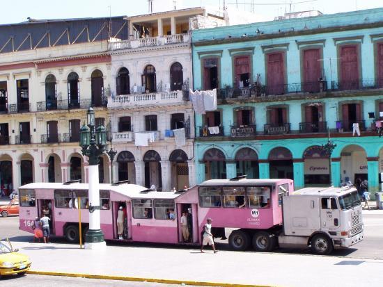 camello-cuban-bus