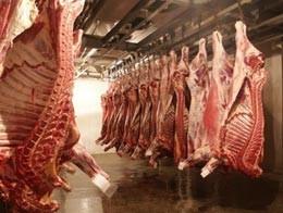 Продажа мяса оптом