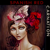 Spanish Red Carnation