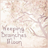 Weeping Branches Moon