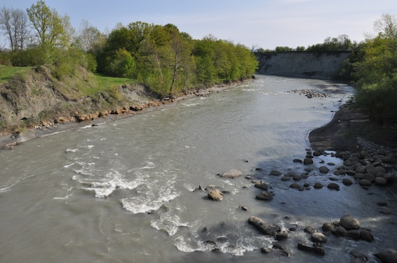Аммониты по берегам реки Белая