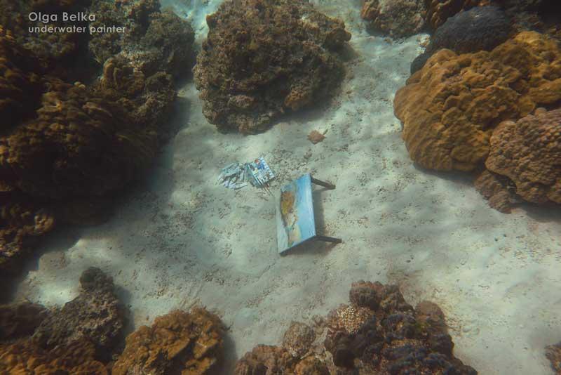 olgabelka-diving-031