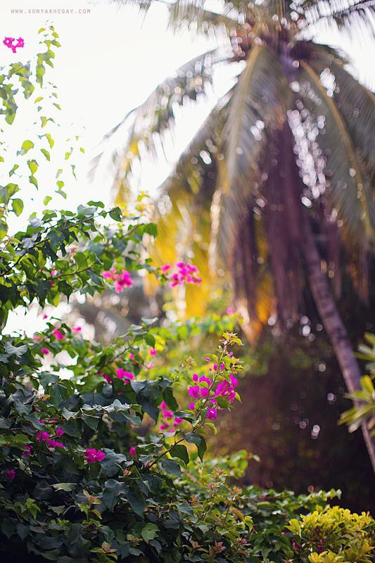 Maldives-part-II-by-Sonya-Khegay-19
