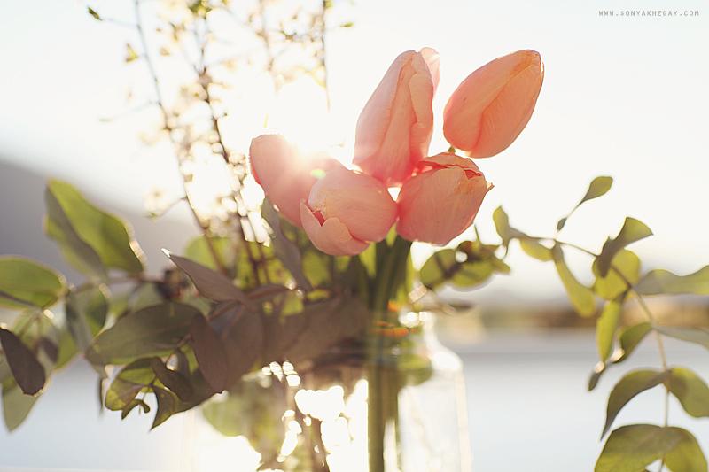 Spring by Sonya Khegay 02
