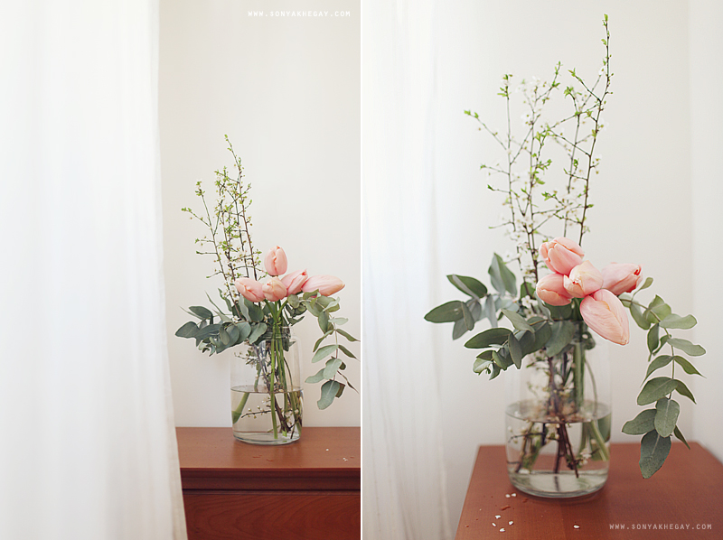 Spring by Sonya Khegay 10