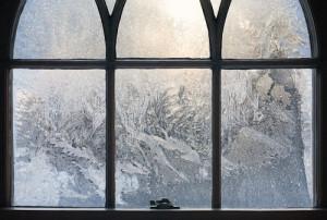 frost_garden23
