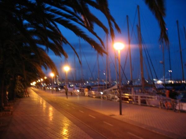 Вечерняя Пальма