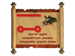 щука-300x225