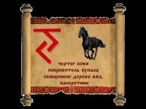 конь-300x225