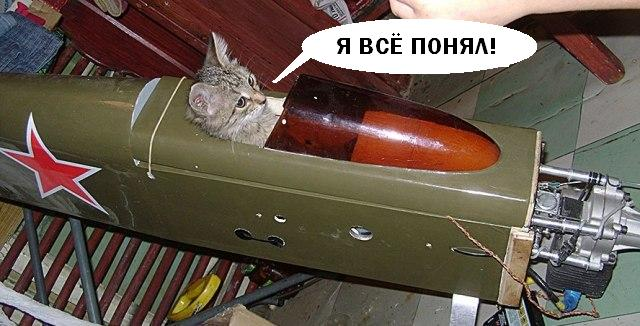 world_of_ru: В тундру или к овцамъ?