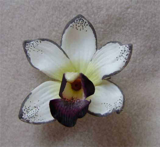 white grey orchid hair flower