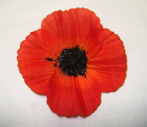 orange poppy hairclip