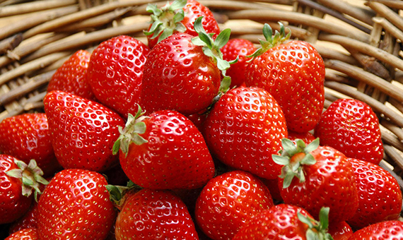 strawberry_texture2584