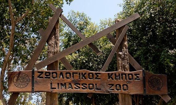 limassol_zoo_2