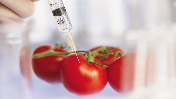 pochemu-rossiya-i-kitay-zapretili-genno-modificirovannye-produkty