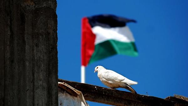 palestina-podgotovila-proekt-rezolyucii-sb-oon-o-prekraschenii-izrailskoy-okkupacii