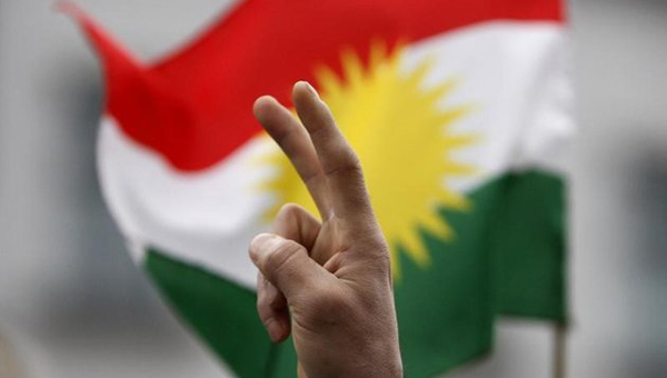 kurdy-mirno-pokinuli-zdanie-parlamenta-niderlandov