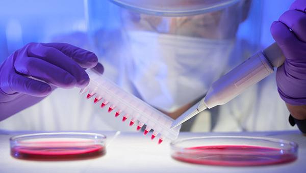 deputaty-kipra-byli-proinformirovany-o-zaschitnyh-merah-protiv-lihoradki-ebola