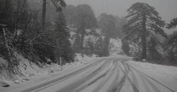 Snow(4)
