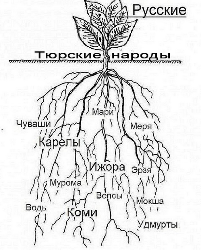 http://ic.pics.livejournal.com/czeslaw_list/71417888/28852/28852_900.jpg
