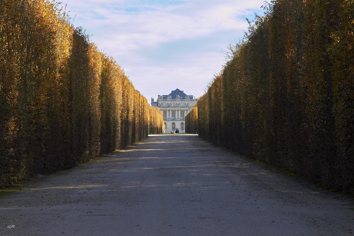 Париж 2018 — Версаль — Аллеи