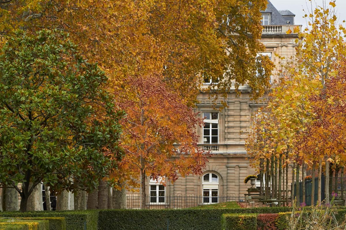 Париж 2018 - Люксембургский сад