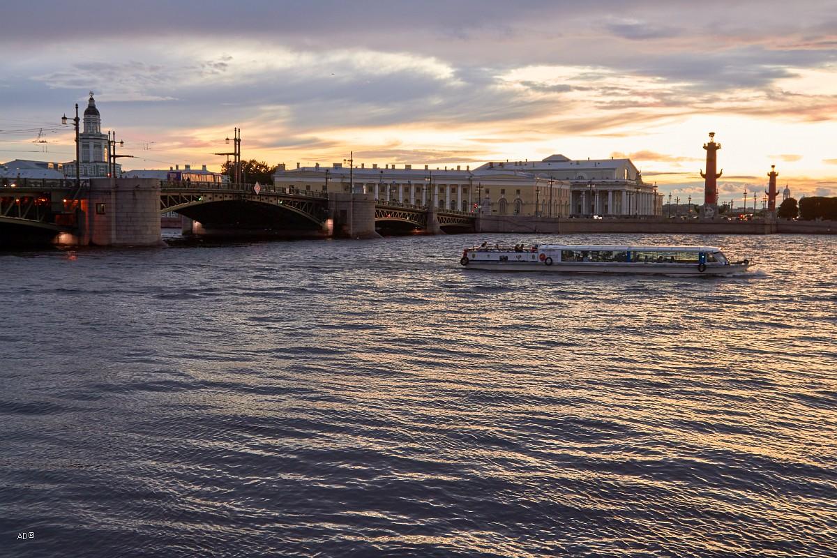 Дворцовый мост и Стрелка Васильевского острова