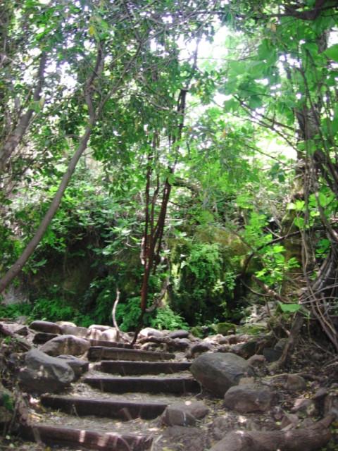 Каменные ступени в бывшем русле реки