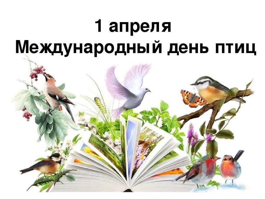 1-апреля-Международный-день-птиц-016.jpg