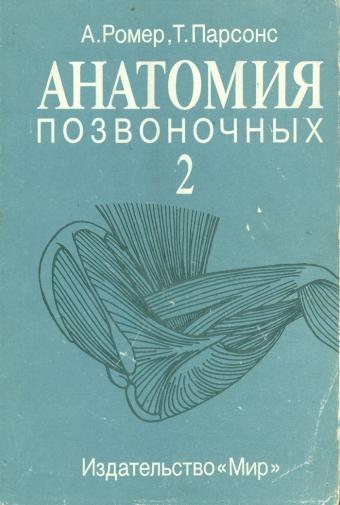 Анатомия позвоночных (2)