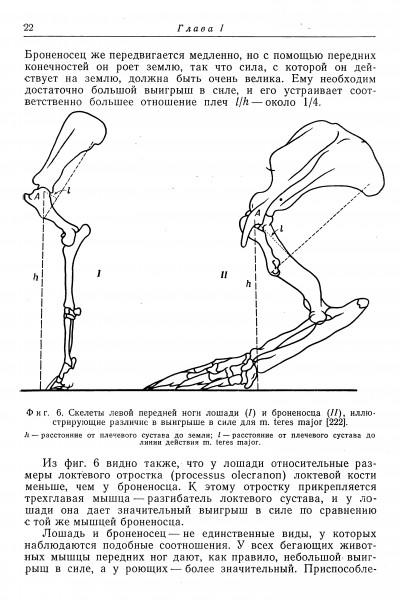 с. 22