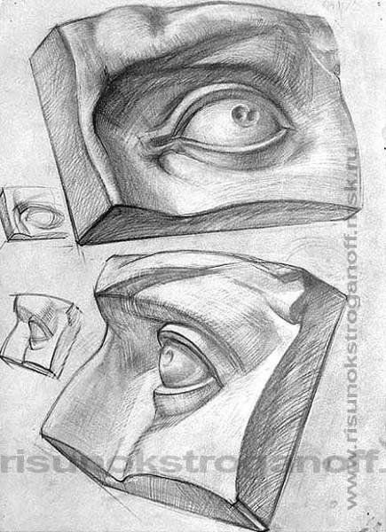 16.Глаз