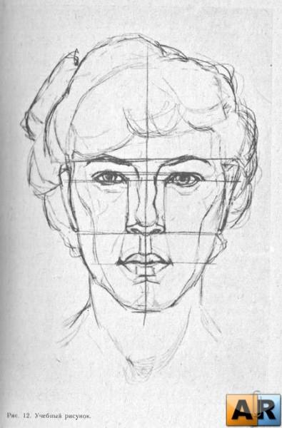 17.Построение в портрете