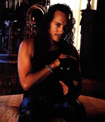 Metallica cats