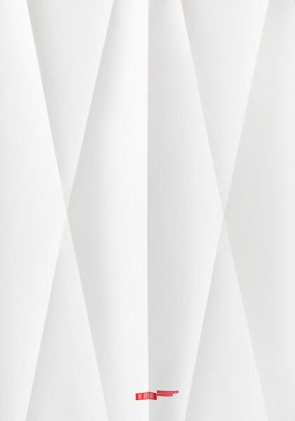 als-birthday-2014-poster