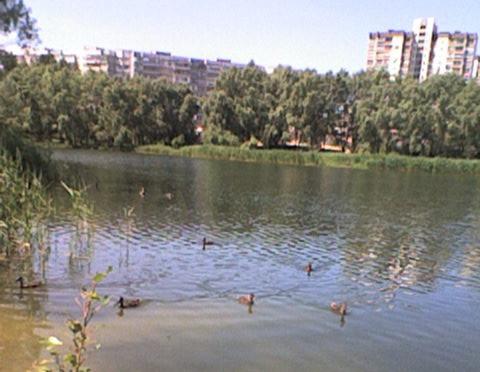 Троещина Озеро 5