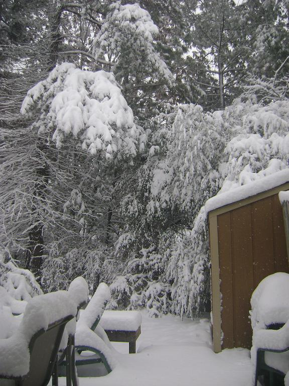 My back deck covered in snow