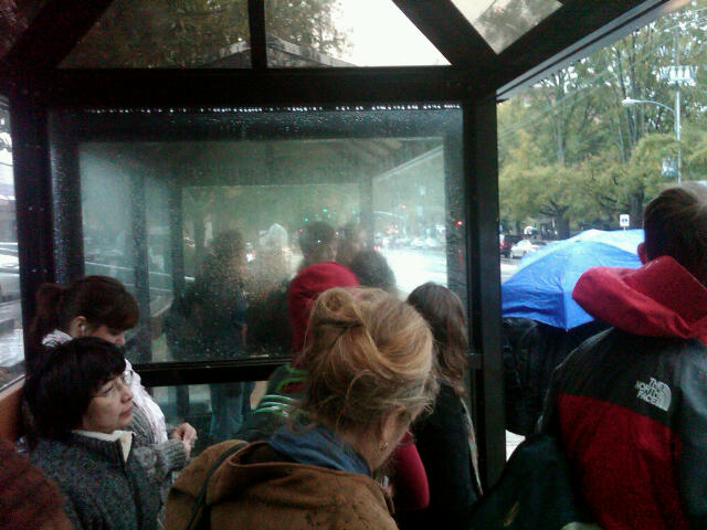 The bus shelter on Hillsborough Street packed with people trying to get out of the rain