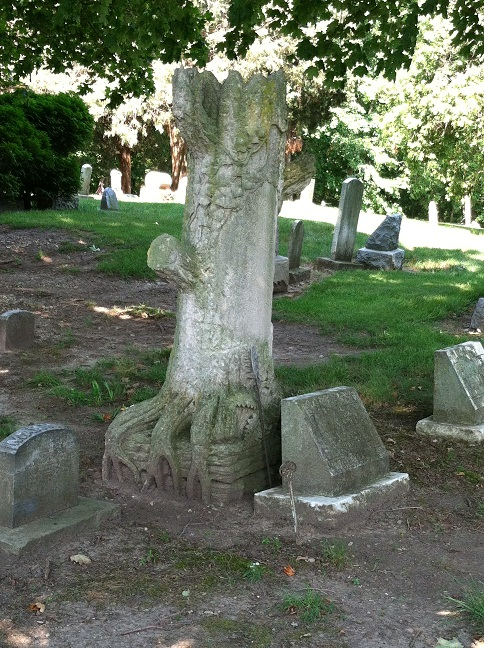 A tree that looks like stone abutting a tombstone